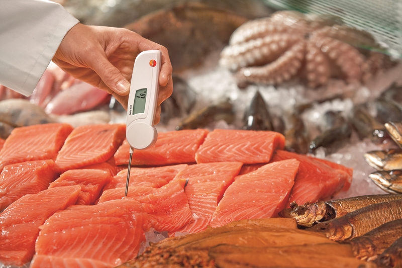 The testo 103 makes checking food temperatures seamless.